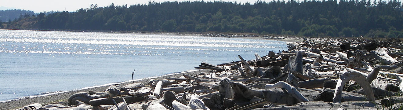 PNW_Web_Header_Rocky_Point_Recreation_Area_07.jpg