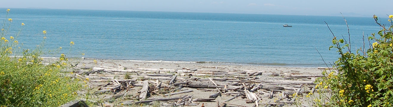 PNW_Web_Header_Rocky_Point_Recreation_Area_05.jpg